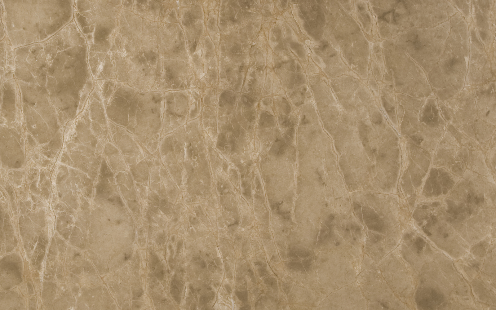 Countertop Texture : Marble Praha Marble